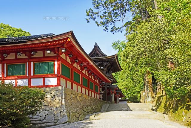 神宮 石上 日本最古の神宮とご神宝 石上神宮  宮司/森