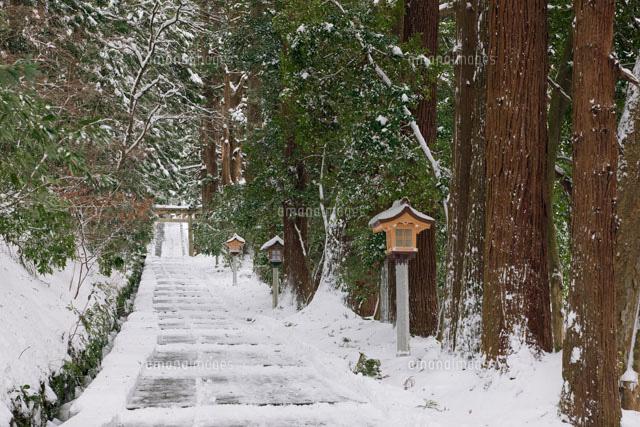 ひめ 神社 白山