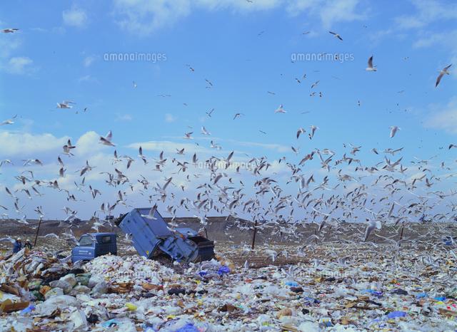 集積 場 ゴミ ゴミ捨て場に住民以外のゴミが!これって違法? 事例と対策を解説