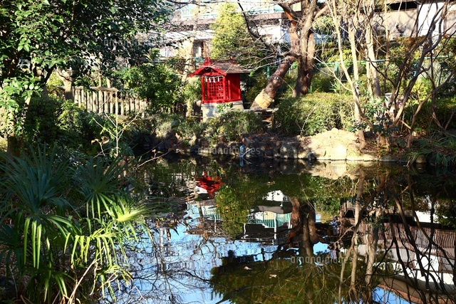 が ね 池 公園 つり