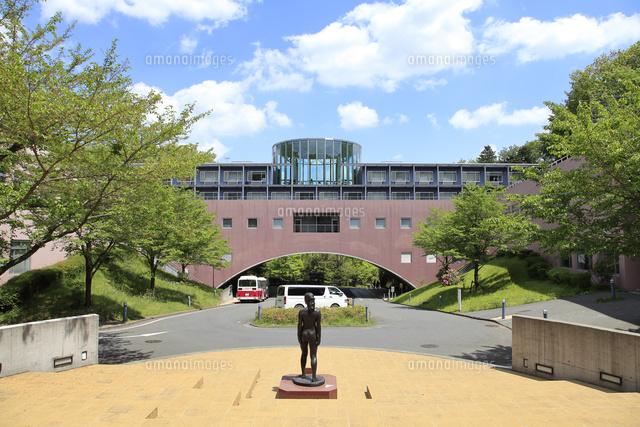 東京 造形 大学