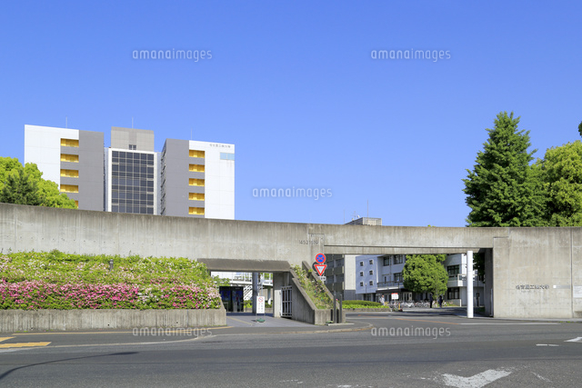 工業 大学 名古屋
