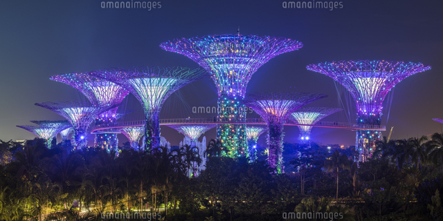 Singapore, Republic of Singapore, Southeast Asia. People walking on the elevated platform at the Gardens By The Bay at night. 11108003437| 写真素材・ストックフォト・画像・イラスト素材|アマナイメージズ