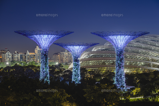 Singapore, Republic of Singapore, Southeast Asia. Gardens By The Bay trees with the city skyline in the backdrop. 11108003438| 写真素材・ストックフォト・画像・イラスト素材|アマナイメージズ