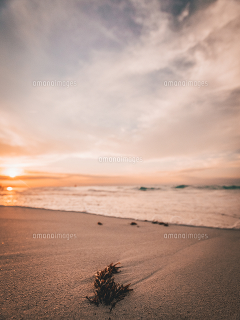 Scenic View Of Beach Against Sky During Sunset 11115154426| 写真素材・ストックフォト・画像・イラスト素材|アマナイメージズ