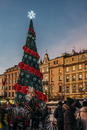 Christmas tree in town square, Cracow, Poland 11086027662| 写真素材・ストックフォト・画像・イラスト素材|アマナイメージズ