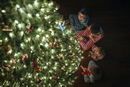 High angle view of siblings sitting by Christmas tree at home 11100059388| 写真素材・ストックフォト・画像・イラスト素材|アマナイメージズ