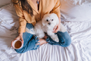 High Angle View Of Dog Relaxing With Woman On Bed At Home 11115167351| 写真素材・ストックフォト・画像・イラスト素材|アマナイメージズ