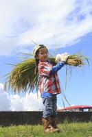 稲を抱えた男の子 10467001492| 写真素材・ストックフォト・画像・イラスト素材|アマナイメージズ