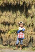 稲を抱えた男の子 10467001495| 写真素材・ストックフォト・画像・イラスト素材|アマナイメージズ