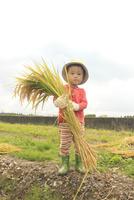 稲を抱えた男の子 10467001530| 写真素材・ストックフォト・画像・イラスト素材|アマナイメージズ