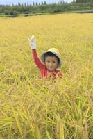 田園と男の子 10467001537| 写真素材・ストックフォト・画像・イラスト素材|アマナイメージズ