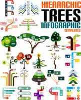 Hierarchic tree infographic templates set 60016013876  写真素材・ストックフォト・画像・イラスト素材 アマナイメージズ